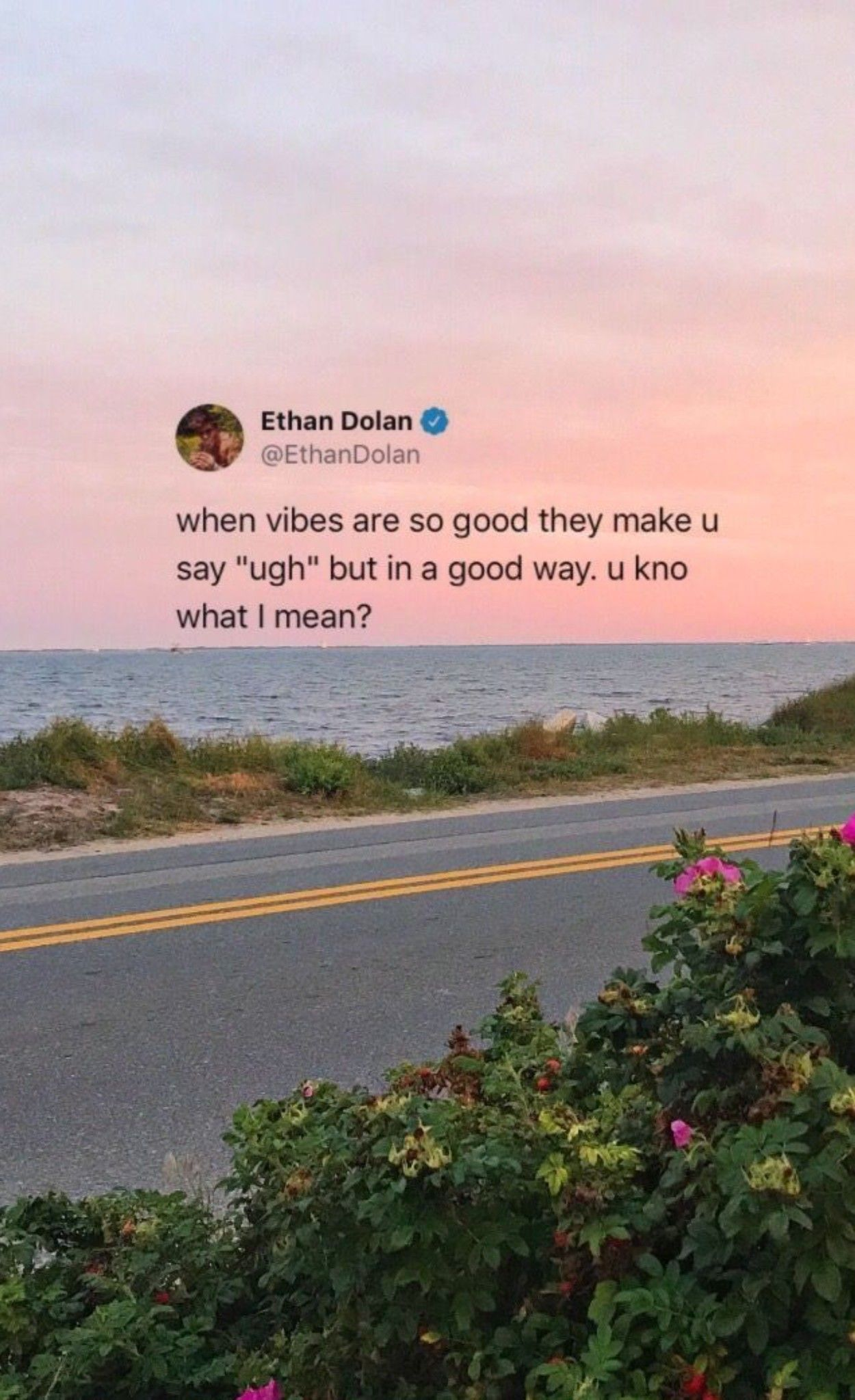 Tweet Quotes Dolan Twin Quotes Twin Quotes