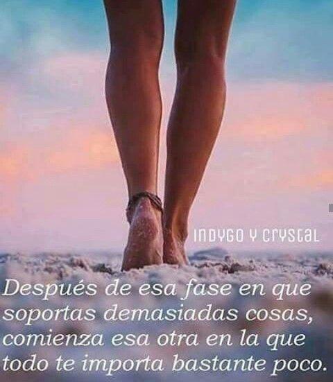 índigo Y Cristal Frases Para Reflexionar Frases Geniales