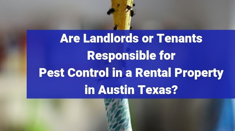 Are Landlords Or Tenants Responsible For Pest Control In A Rental Property In Austin Texas Being A Landlord Pest Control No Response