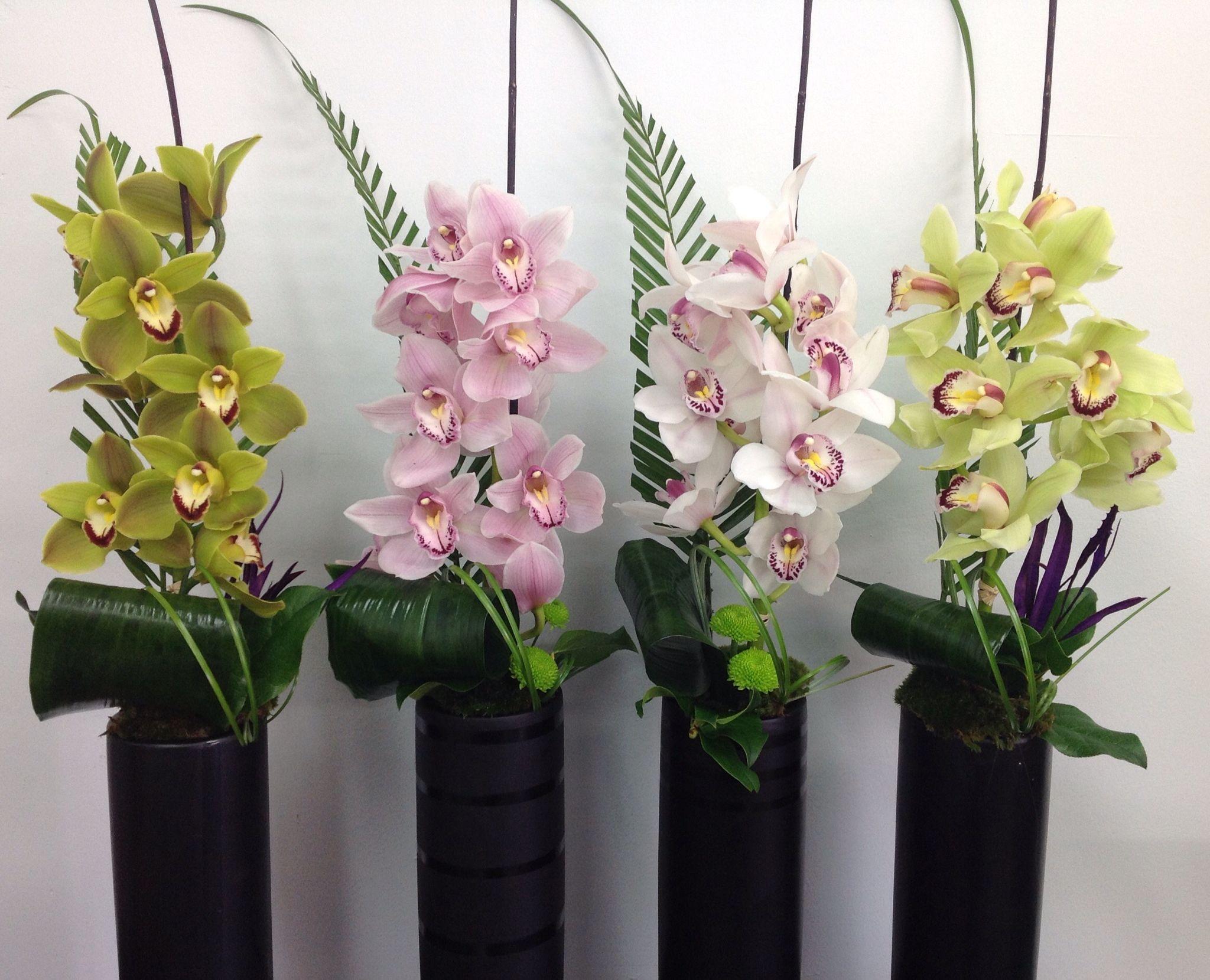 Cymbidium Orchids Corporate Arrangements Flower Arrangements Floral Arrangements Flower Room