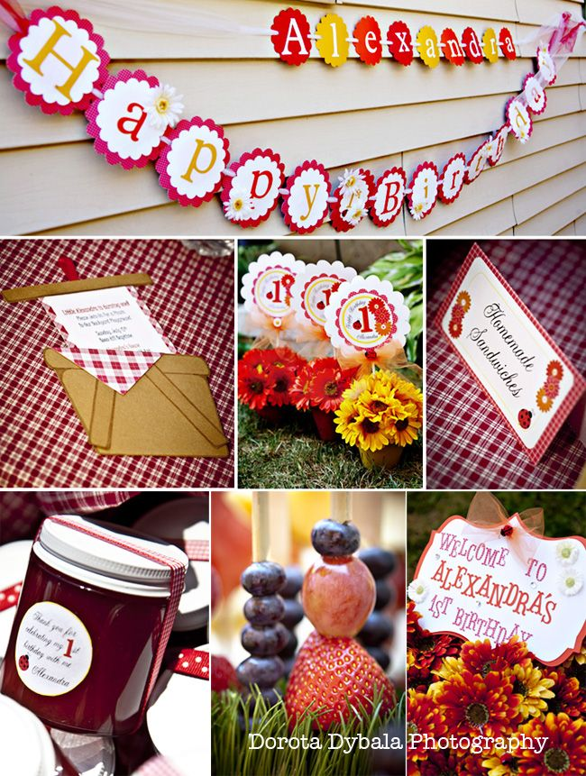 1st Birthday Party Decorations Picnic Themed Children