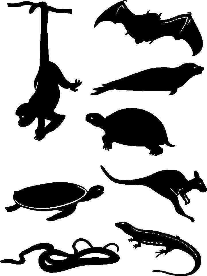 Silhouettes dessins cliparts animaux sauvages silhouettes d 39 animaux - Silhouette d animaux a imprimer ...