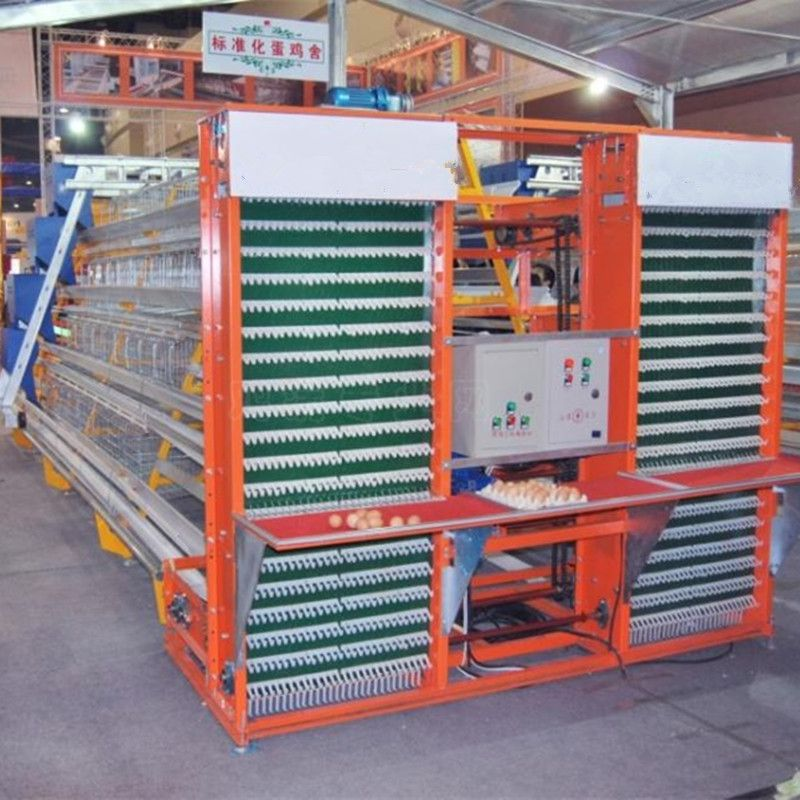 automatic chicken layer cage for sale in philippines | Cages