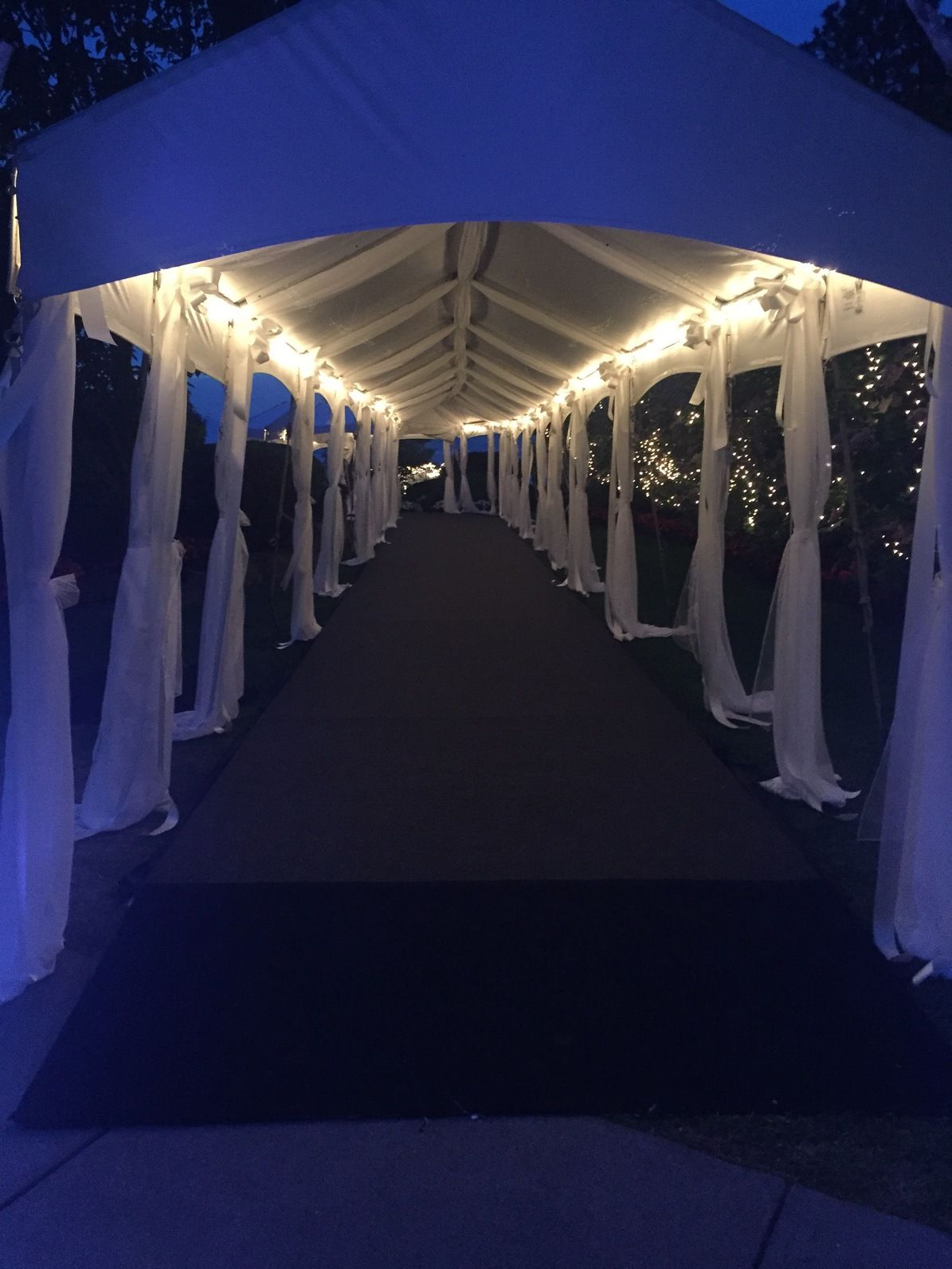 Lit Up And Carpeted Walkway Party Tent Tent Wedding Walk