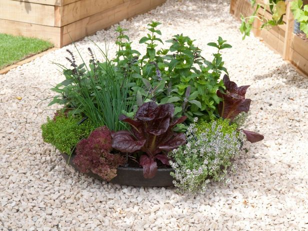 Herbs In The Round