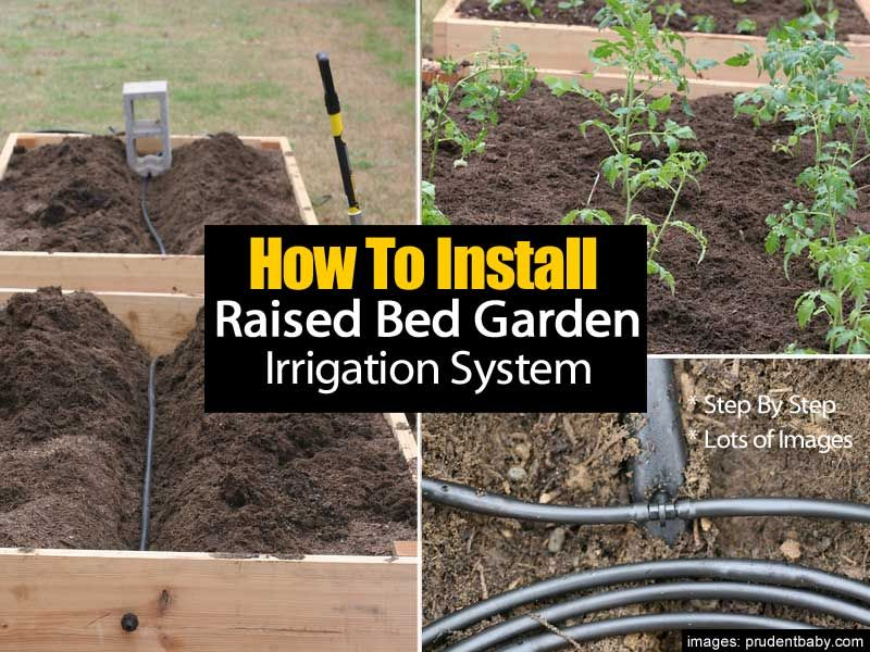 How To Install A Raised Bed Garden Irrigation System Step By Step Garden Irrigation System Raised Garden Beds Irrigation Garden Watering System