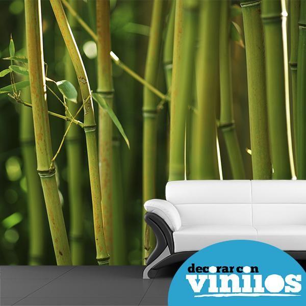 Murales Y Vinilos Bambu