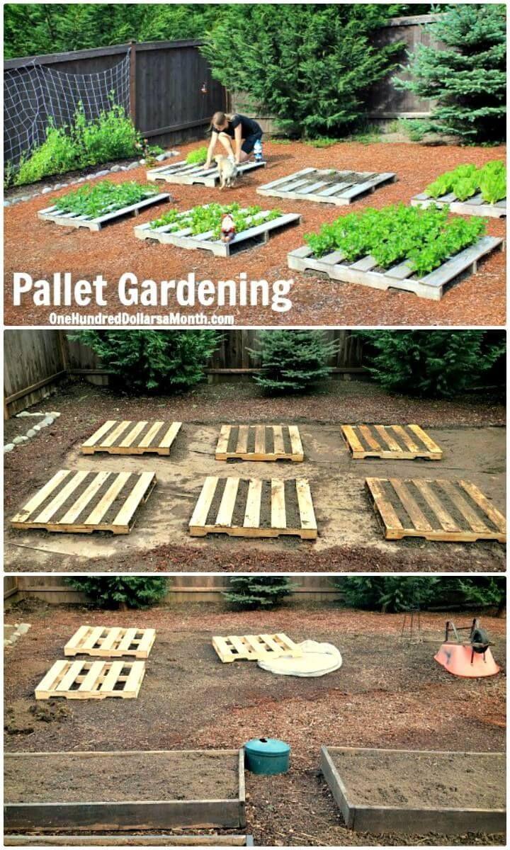 30 DIY-Palettengarten-Projekte zur Aktualisierung Ihrer Gärten #veggiegardens
