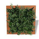 Outdoor Framed Living Wall Planter