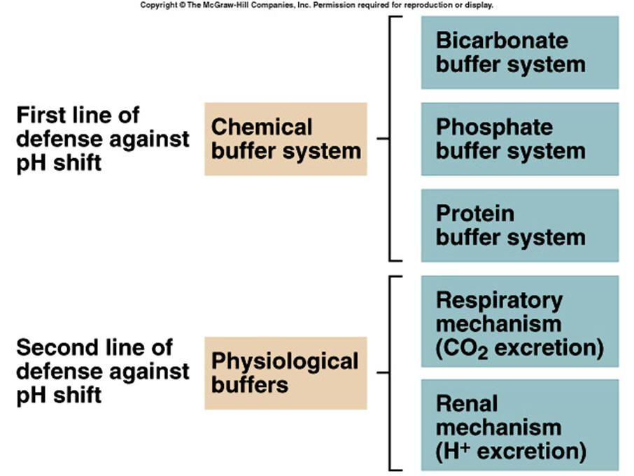 chemical and physiological pH buffers | fluids/lytes balance