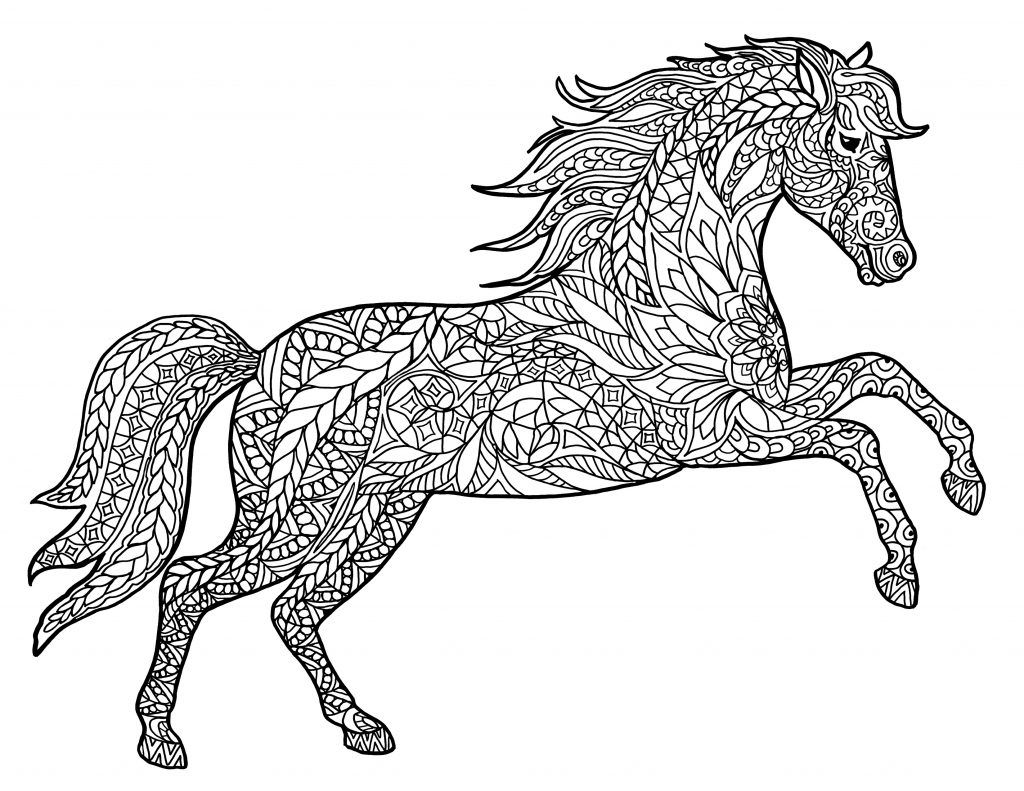 Adult Coloring Pages Animals Horse Coloring Pages Coloring
