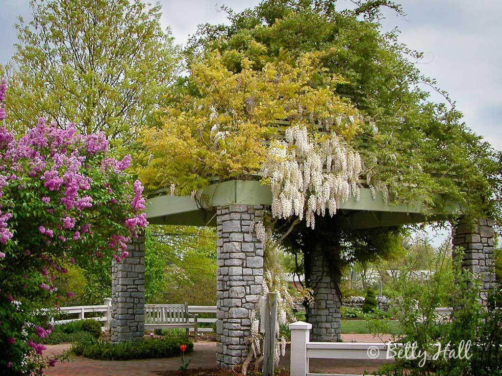 The Arboretum Lexington Kentucky State Botanical Garden Of