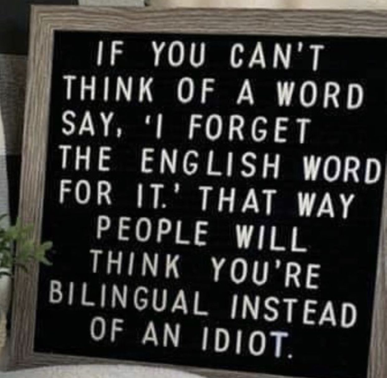 Pin By Joanne Marszal On Humor Quotes Funny Quotes Message Board Quotes Haha Funny