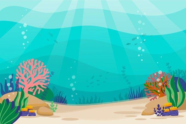 14 Descarga gratis Fondo Bajo El Mar Para Videoconferencia.
