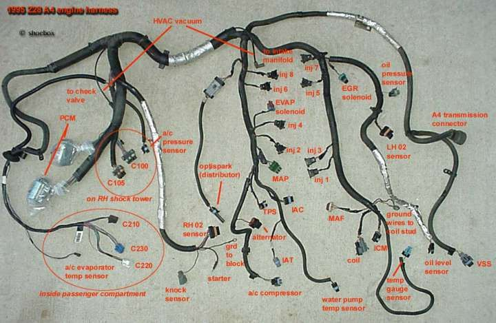 17 99 Civic Engine Harness Wiring Diagram Engine Diagram Wiringg Net Harness Wire Civic