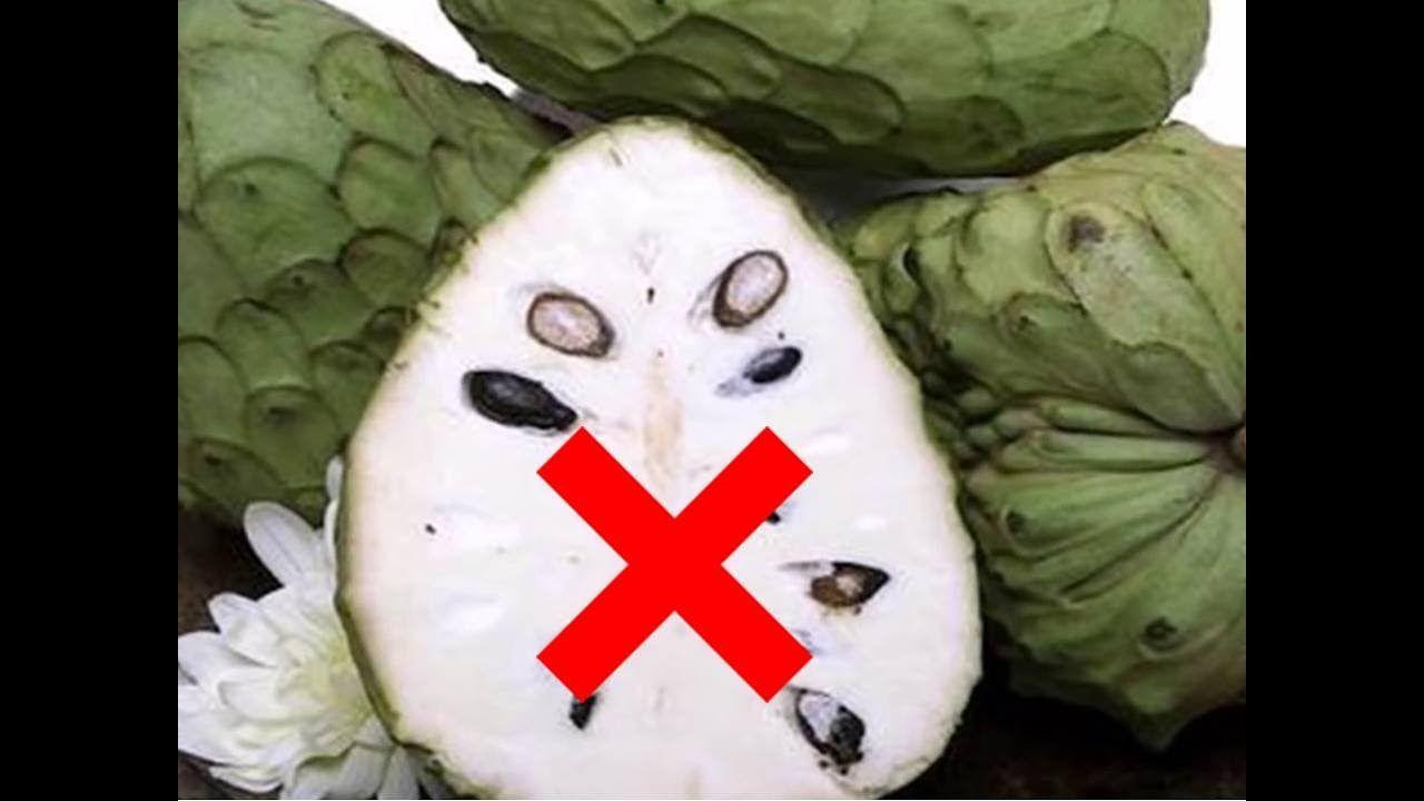 ¡Cuidado! Nunca consuma guanábana o graviola si usted tiene estas condic...