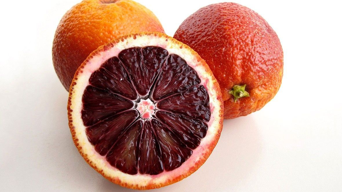 how to store oranges and tangerines