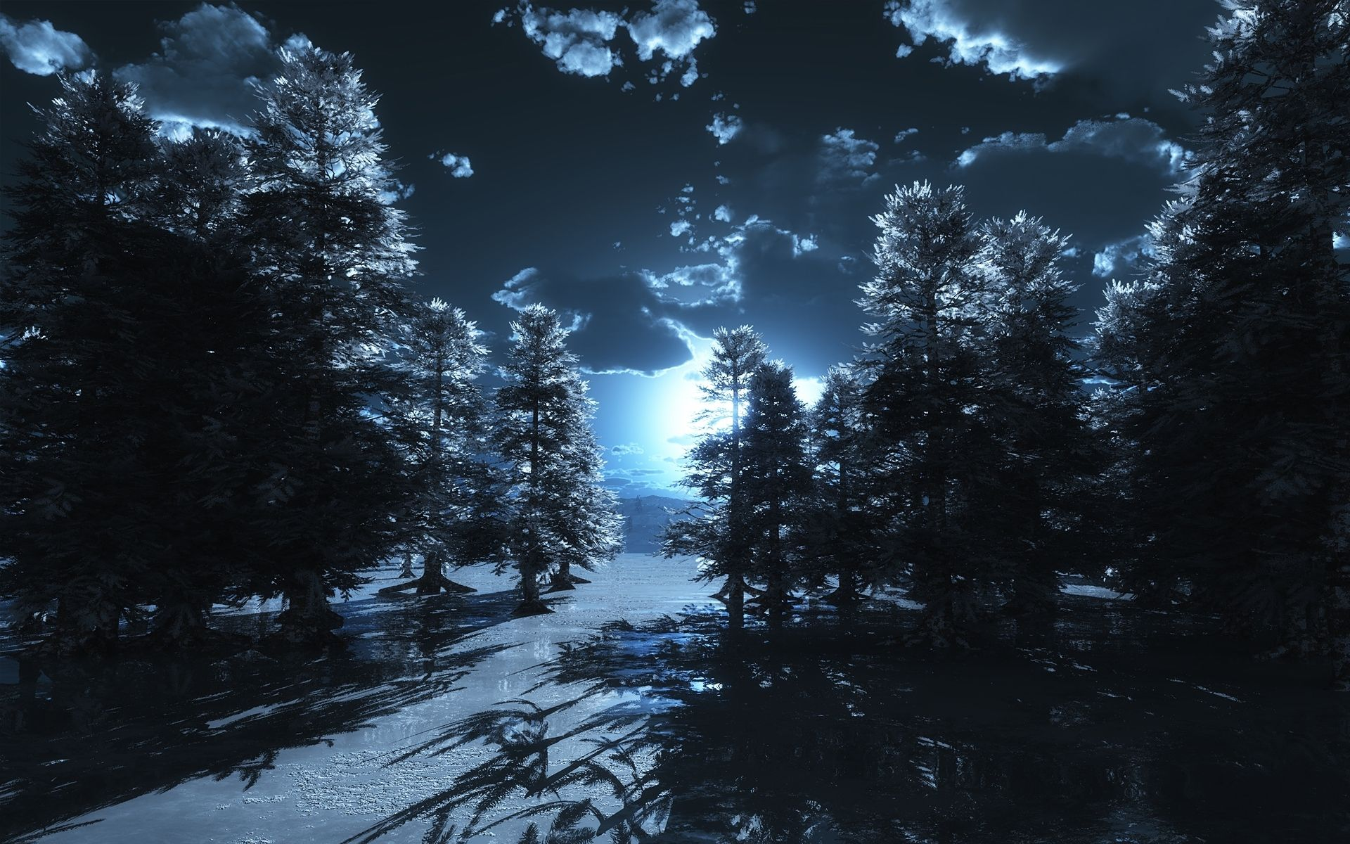 Dark Forest Moon HD Images Wallpaper | MoonGazer ...
