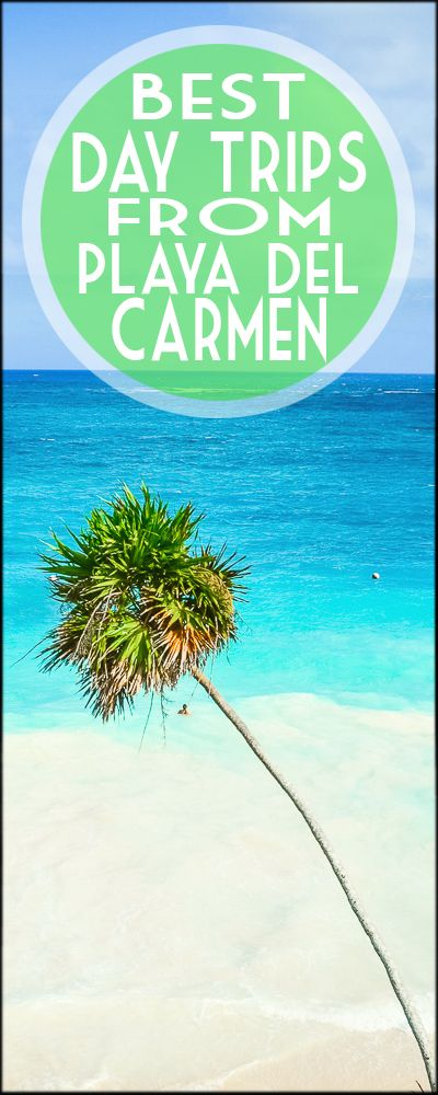 Playa del Carmen Mexico a must for all those that visit Mexico! Best day trips from Playa del Carmen including swimming the sea turtles, exploring the cenotes, visiting the ruins, and much more!