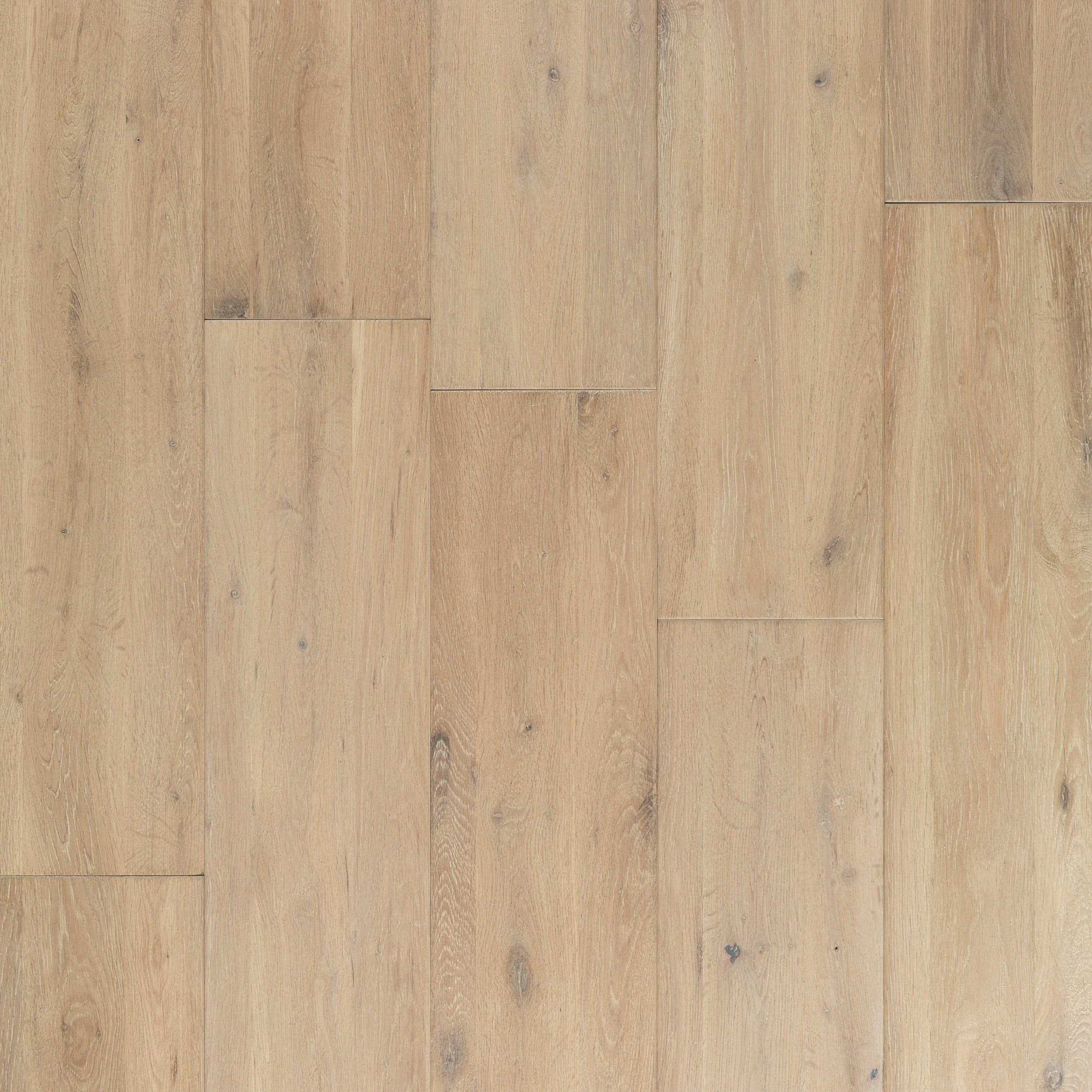 Seashell Acacia Solid Hardwood Solid Hardwood Floors Light Wood Floors Light Hardwood Floors