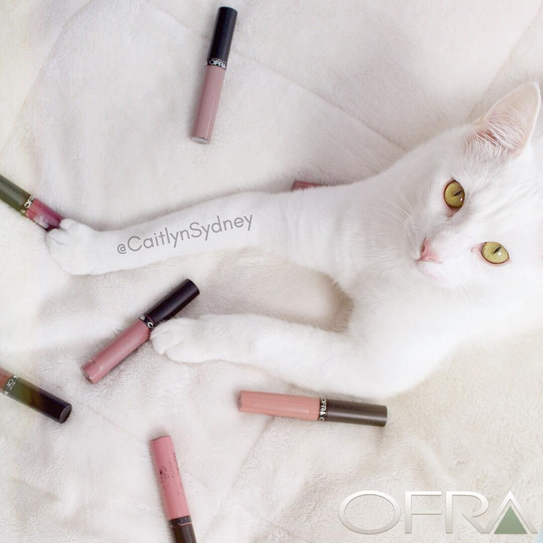 Use code PINNER for 30% off! I think Wilco likes @ofracosmetics liquid lipsticks as much as I do!! Not to mention that Ofra cosmetics is Cruelty Free!  #makeup #crueltyfree #crueltyfreemakeup #liquidlipstick #makeupedit #cat #ofraliquidlipstick #makeupaddict #animals #ofracosmetics #ofra https://www.ofracosmetics.com/collections/lips/products/long-lasting-liquid-lipstick?variant=9014147651