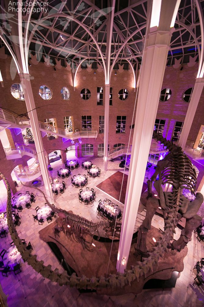Atlanta Wedding Ceremony Reception Venue Fernbank Museum Of Natural History Dinosaur