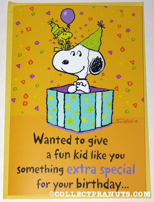 Snoopy Woodstock In Gift Box Birthday Greeting Card Images Happy
