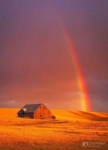 Amazing Snaps: The Palouse Region