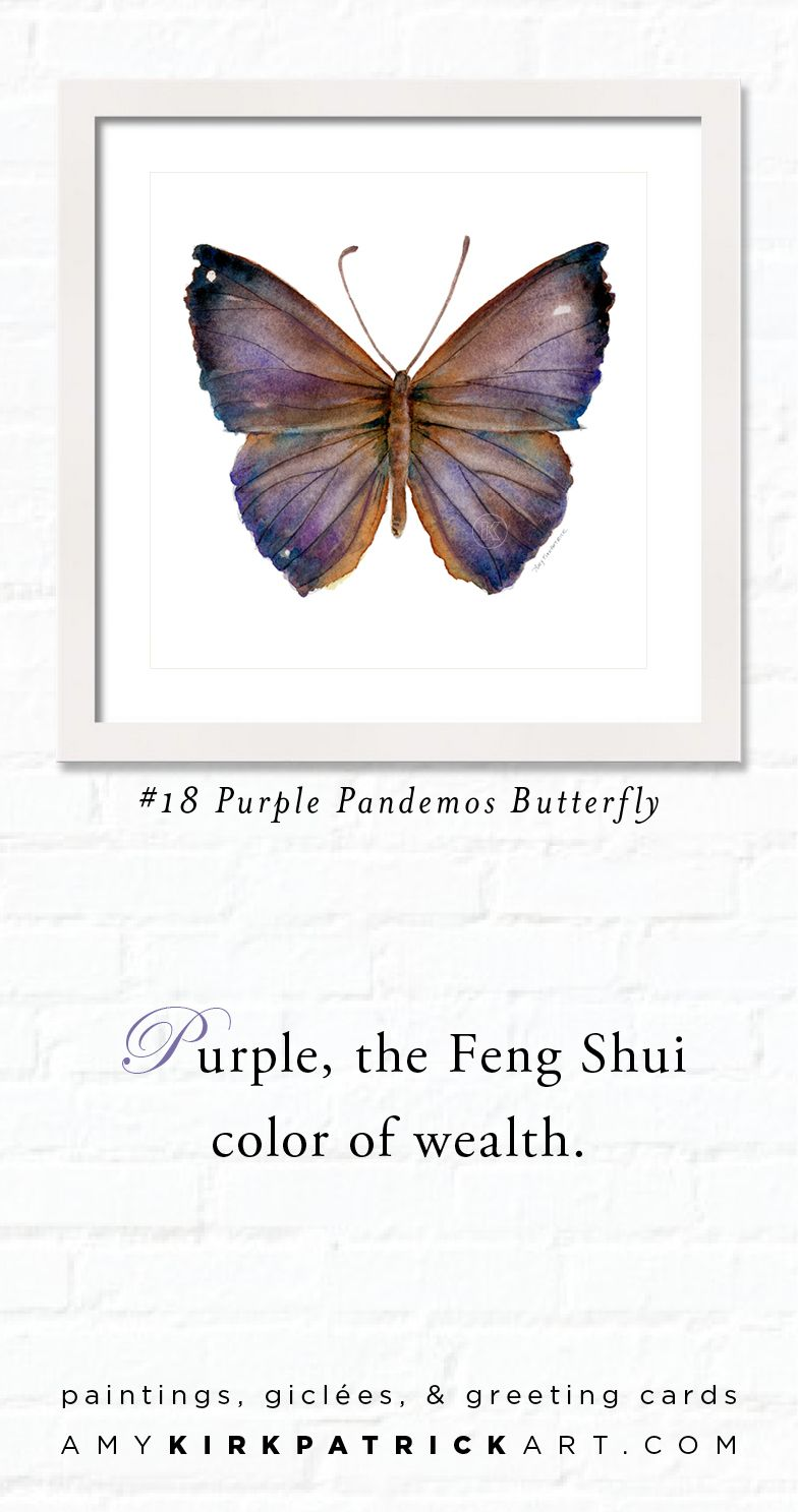 18 PURPLE PANDEMOS BUTTERFLY Butterfly Watercolor Art Prints Greeting Cards O