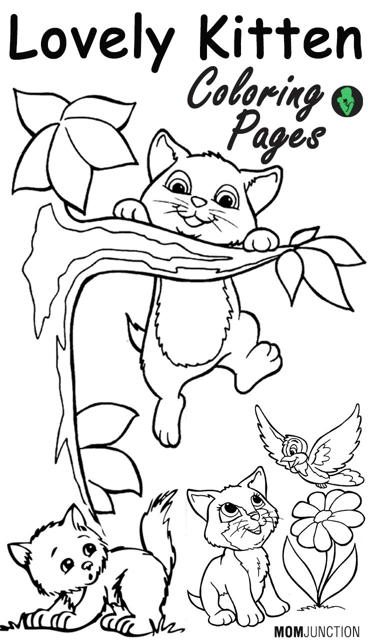 Top 15 Free Printable Kitten Coloring Pages Online | Pinterest ...