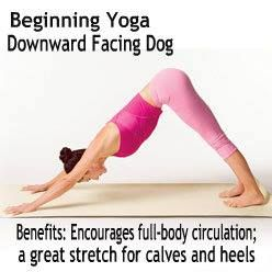 how to get on all fours with hands and knees shoulderand