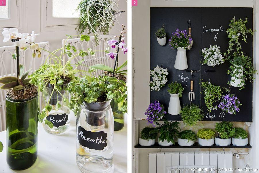 urban jungle la nature s 39 installe en cuisine plantes d 39 int rieur house plants pinterest. Black Bedroom Furniture Sets. Home Design Ideas