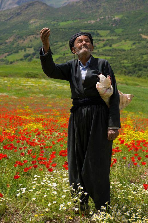 Man enjoys the Beauty of the Province Kordestan, Iran. What a Landscape❤