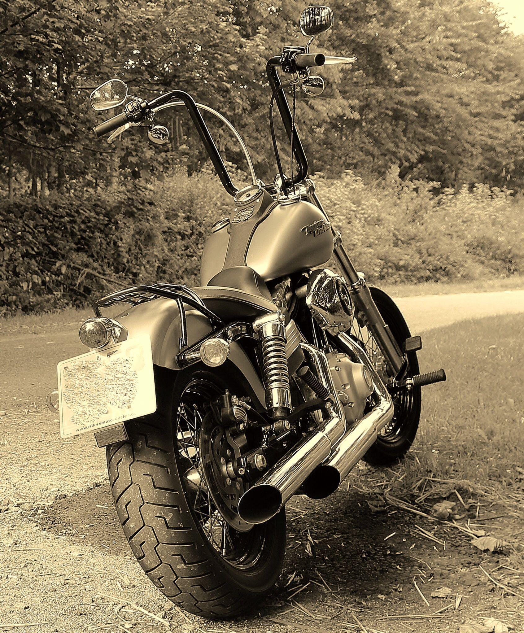 Harley Davidson FXDB Dyna Street Bob Harley davidson