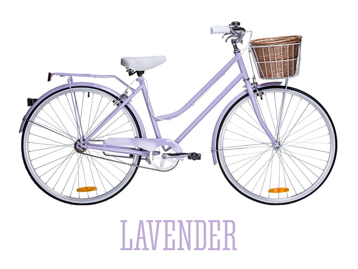 Buy Reid Vintage Ladies Bicycle Singlespeed Will Double As A