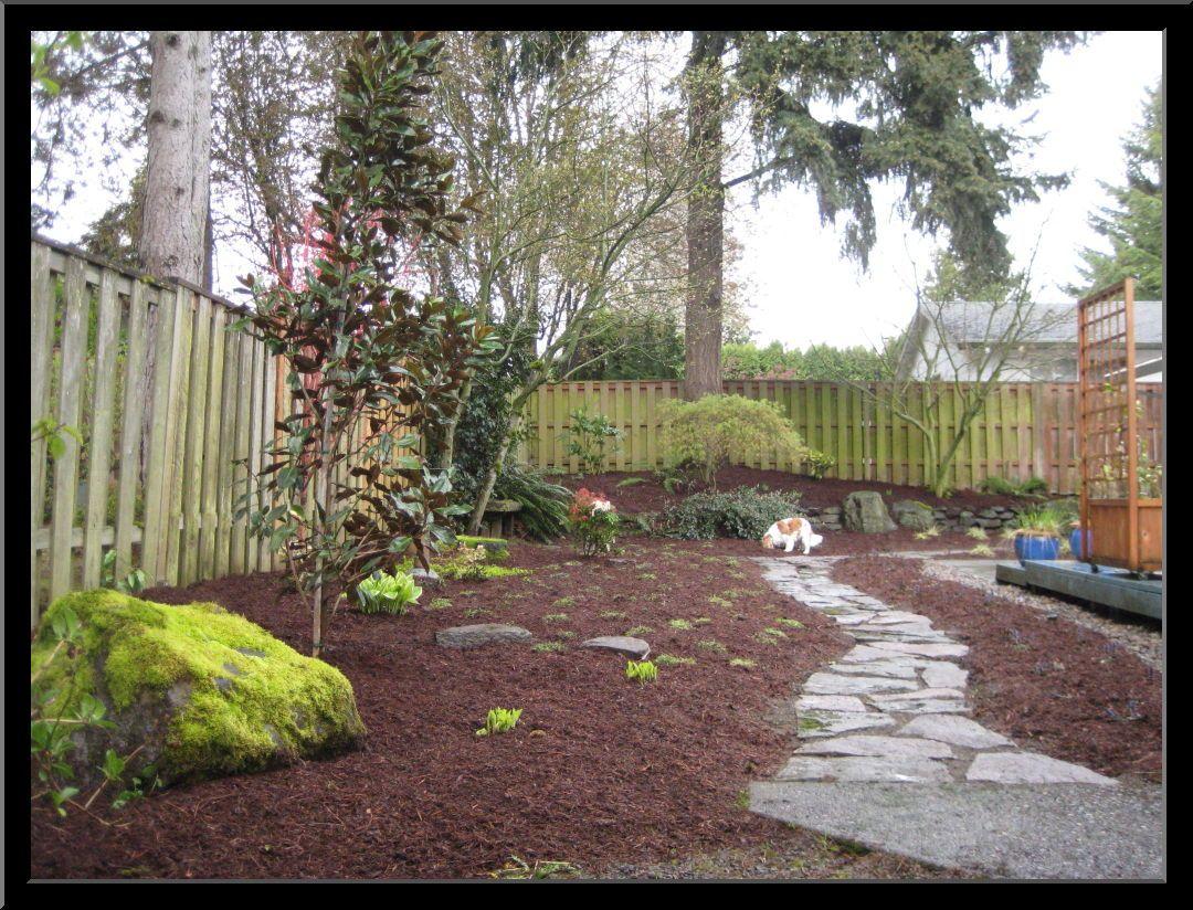 Dog friendly backyard design ideas | For the Home | Pinterest | Dog ...