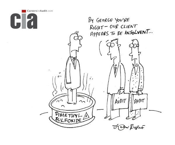 Audit Careers - Insolvent Audit Cartoons Pinterest - internal audit report