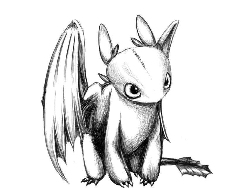 Toothless is so cute   Dragon training   Pinterest   Dragones, Como ...