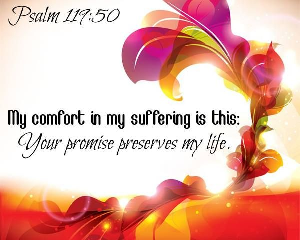 PSALM  119:50 ......Your promise preserves my life.