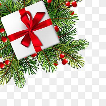 Vetores Clipart Em Png E Arquivos Psd Gratuitos Para Download Gratuito Christmas Illustration Branch Vector Christmas Vectors