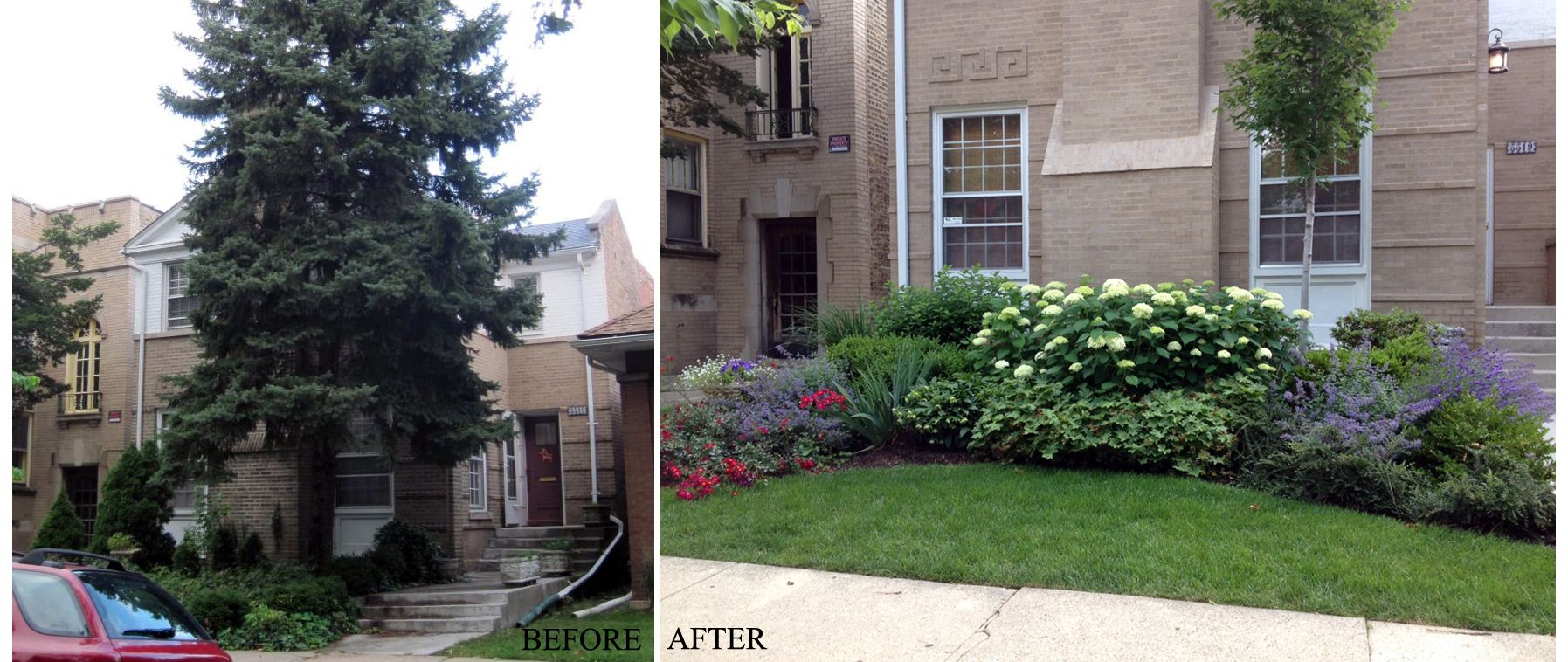 Before | After | Front Yard | Landscaping | Urban | Garden | Design on urban living room design, urban garden design, urban front yard landscaping, urban apartment building design, urban great room design,
