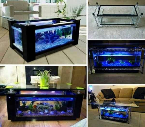 Magnifique Table Basse Aquarium.