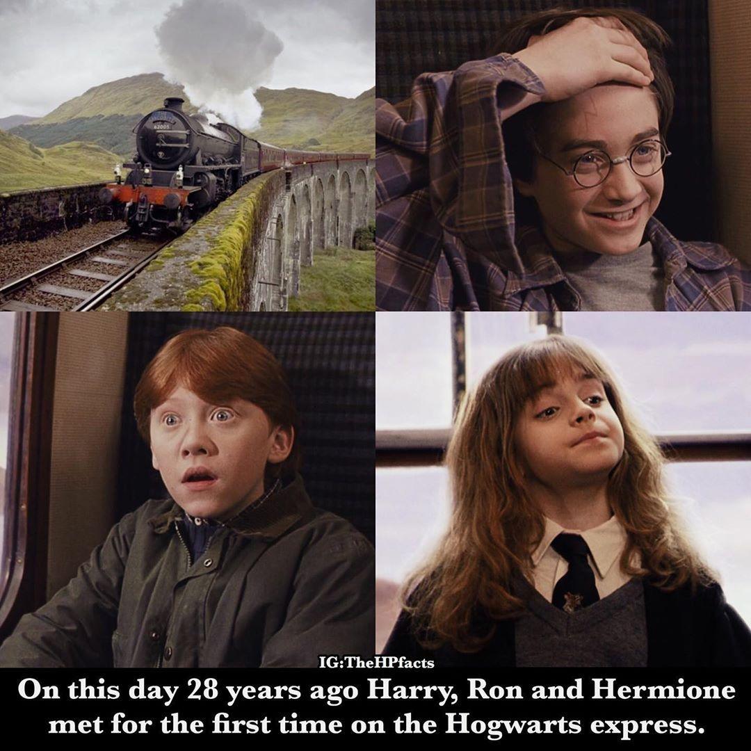 Pin By Roxana On Harry Potter Slytherin Harry Potter Harry Potter Obsession Harry Potter Facts