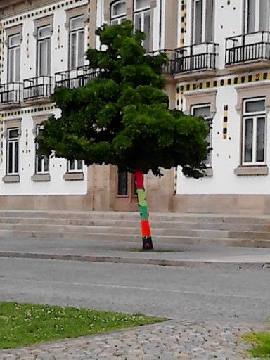 O Crochet Sai à Rua Vila Nova De Cerveira 2014 Yarn Bombing Breien House Styles