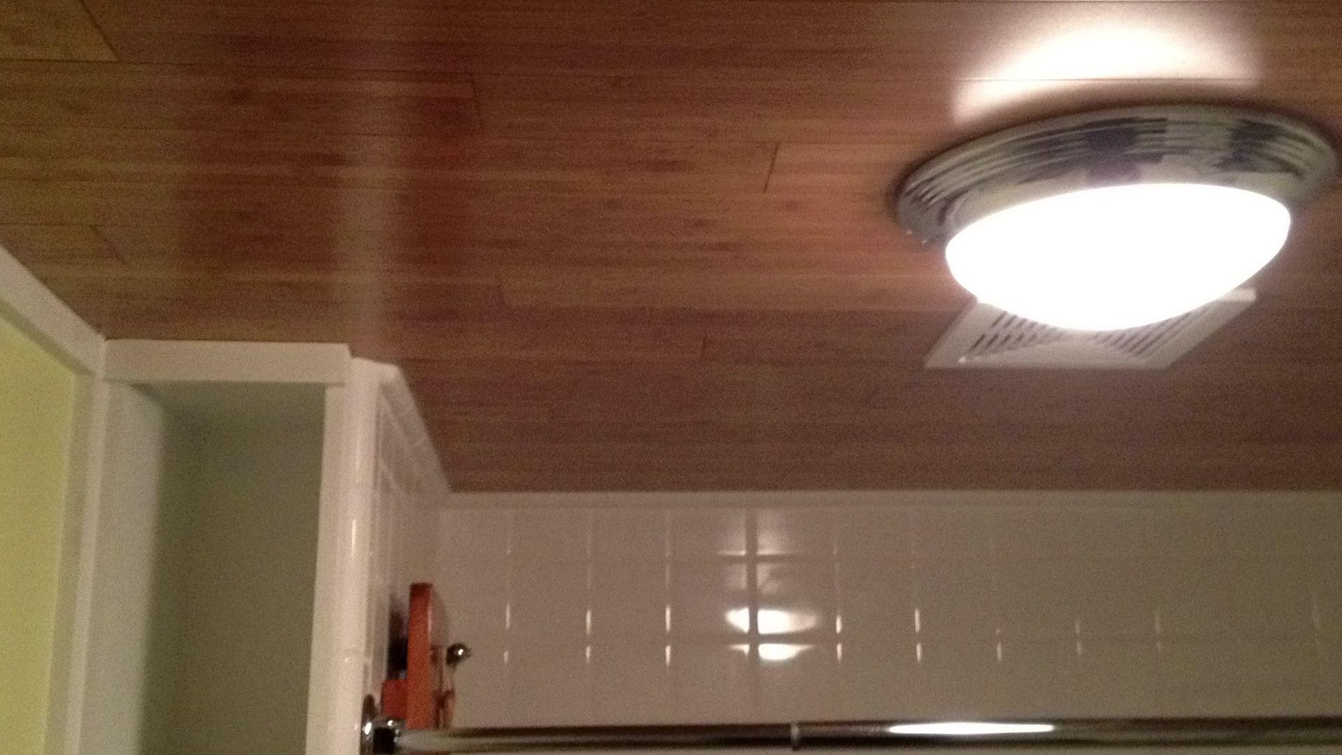 Bamboo Flooring On The Bathroom Ceiling Nice Work
