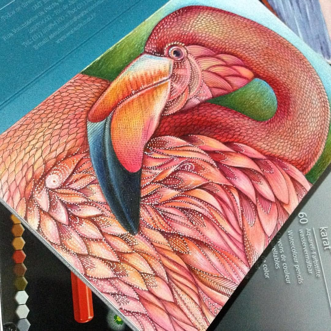 Postcard Reino Animal de Millie Marotta - Editora Sextante - ainda acho que…