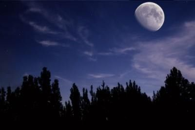 Moonlight Hike at Roxborough State Park Littleton, CO #Kids #Events