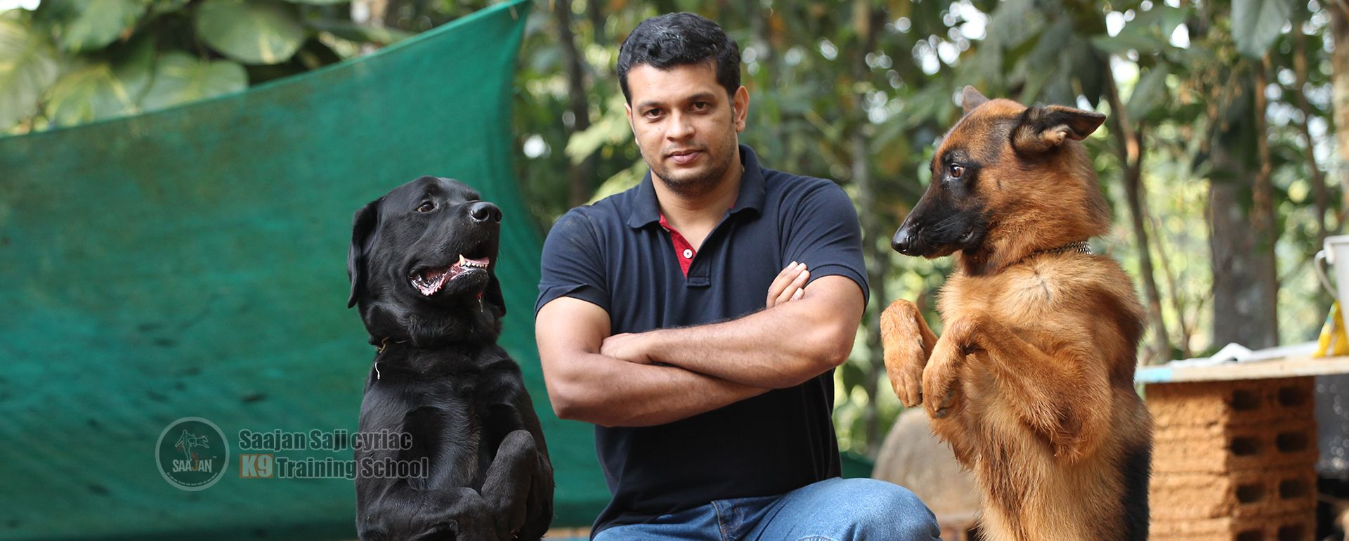 Saajan Saji Cyriac K9 School Punch Face Heavy Bone Rottweiler Puppy For Sale Price Dogs For Sale In 2020 Rottweiler Puppies Rottweiler Puppies For Sale Dogs For Sale
