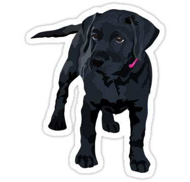 Black Lab Puppy Black Lab Sticker Black Lab Pup Sticker Black