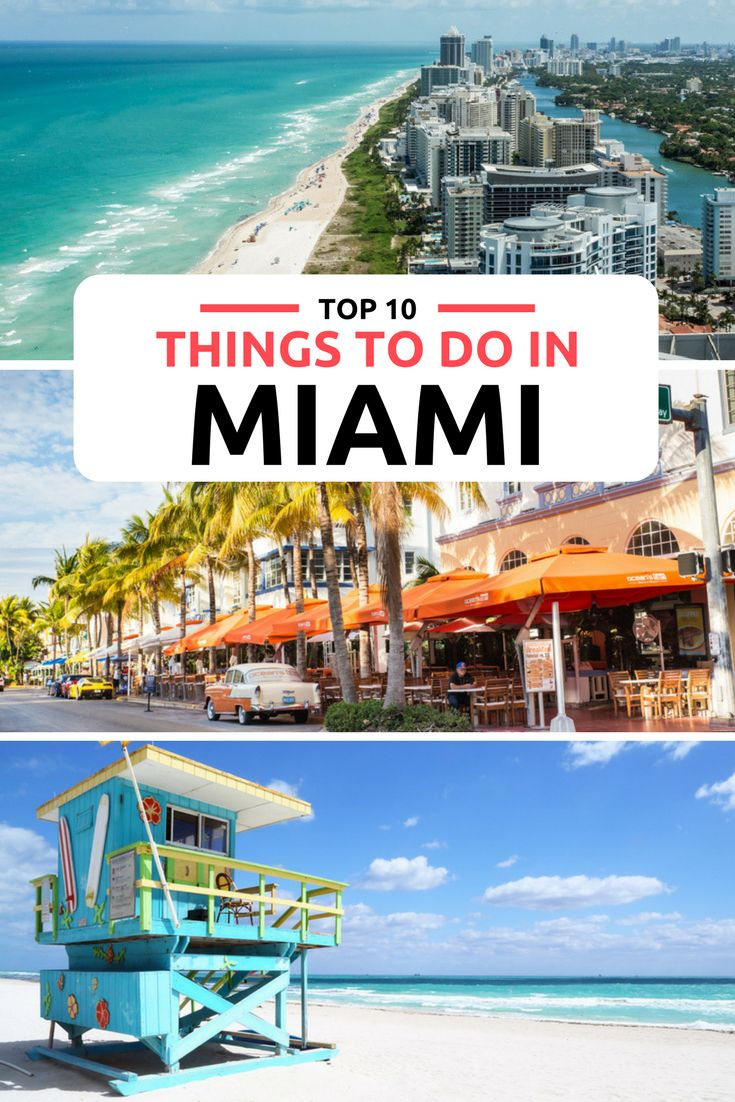 Top Things To Do In Miami From South Beach The Everglades Discover 10 Best With Our Informative Guide